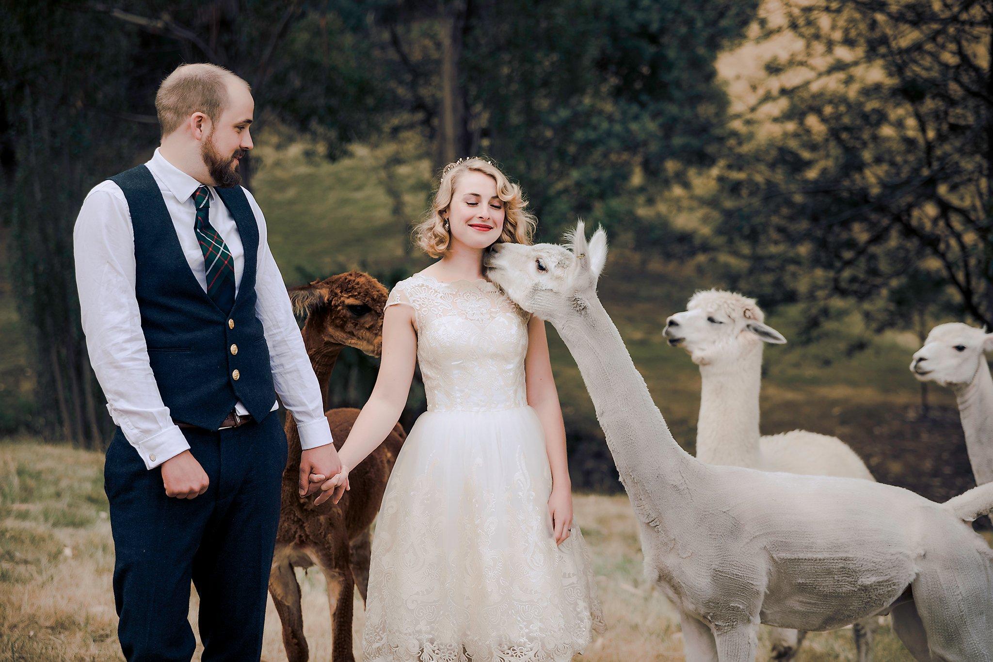 Birchview-Tasmania-Intimate-ceremony-venue