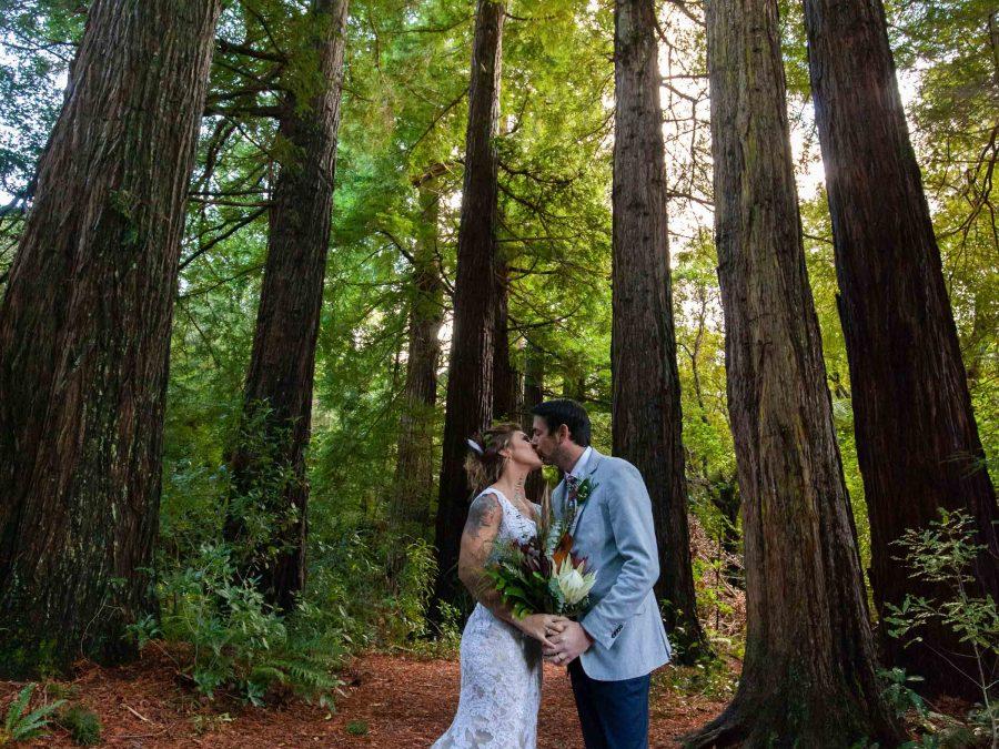 Pūkaha National Wildlife Centre Wedding Venue
