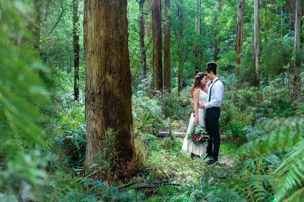 Greenfleet ecofriendly wedding favours - carbon offset your wedding by planting tree -1