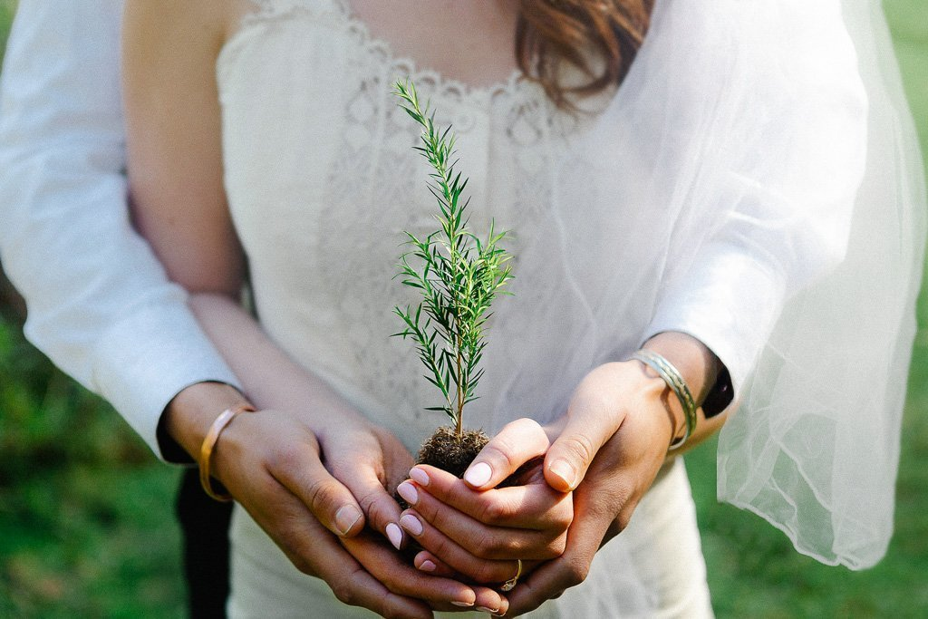 Greenfleet Eco-Friendly Wedding Favours – Plant a tree for each of your wedding guests